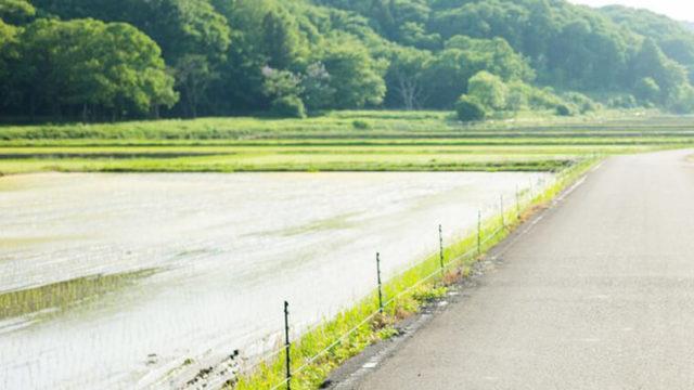 田舎の土地でもできる6つの活用方法|事前に確認しておくべき項目