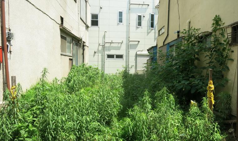 狭い土地(狭小地)の有効活用方法8選|広さに合わせた土地活用の選び方