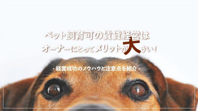 ペット飼育可の賃貸経営はオーナーにとってメリットが大きい!経営成功のノウハウと注意点を紹介